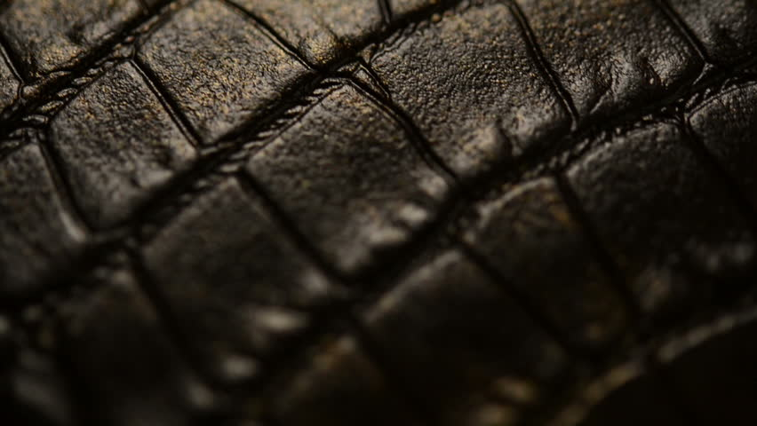 Crocodile skin - HD stock footage clip