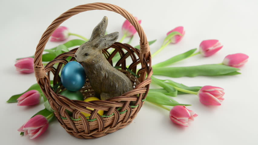 Putting Easter eggs in basket with easter bunny and pink tulips around - HD stock video clip