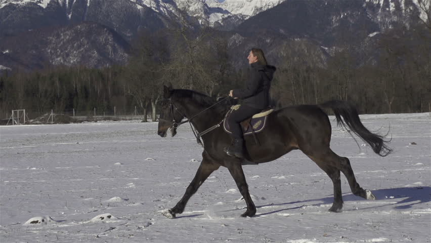 SLOW MOTION: cantering on a snowy field - HD stock video clip