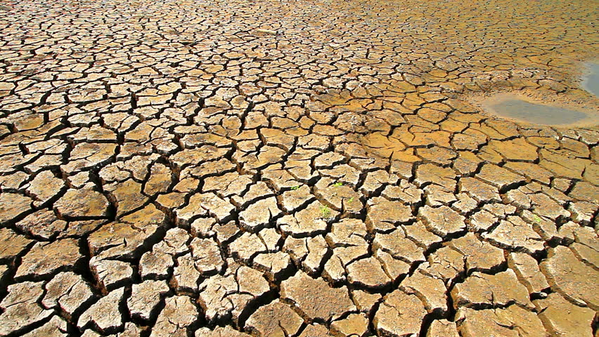 Drought disaster. - HD stock video clip