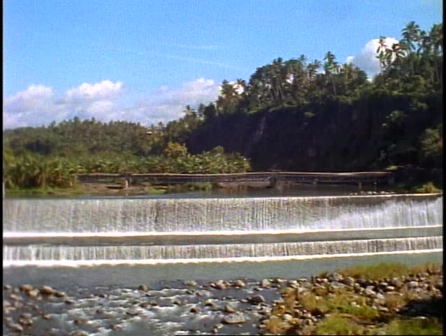 Bali tropical jungle, green, lush rainforest, dam, water flowing over, pan right