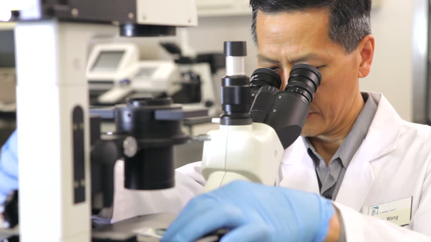 Scientist in laboratory examining specimen through microscope. Shot on Canon 5d Mk2 with a frame rate of 30fps - HD stock video clip