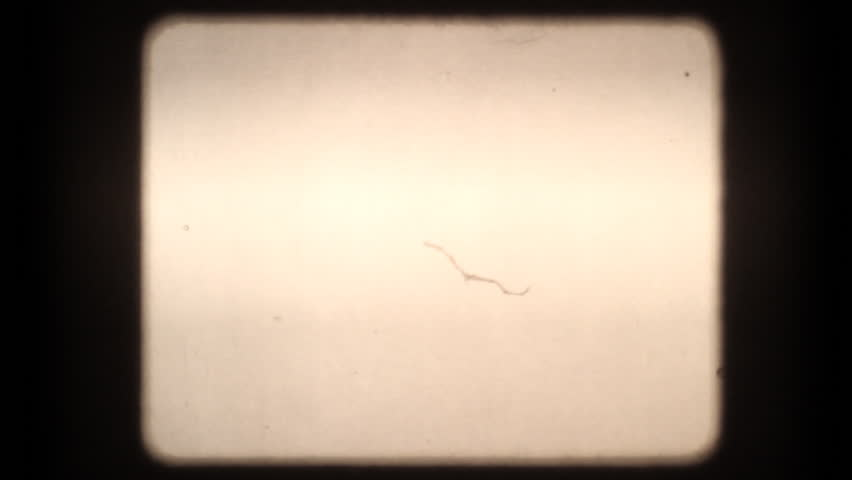 25 seconds of projected blank 8mm film with dust, scratches, and hair. Includes projector audio. Please see my large collection of film textures and effects for more clips like this.