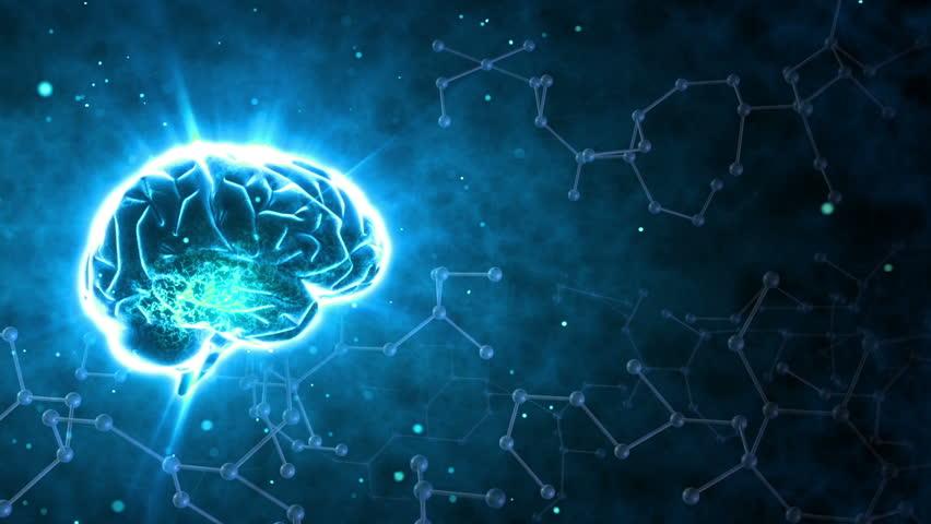 Brain images.