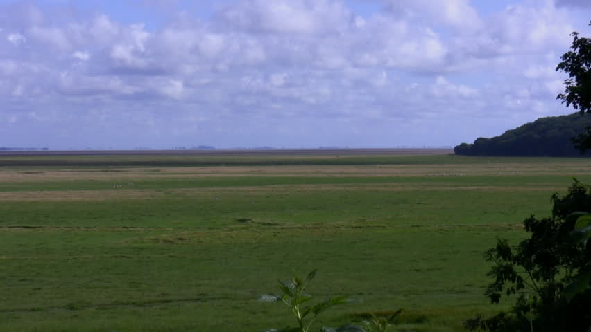 Zoom out of a flat river estuary landscape  - HD stock footage clip