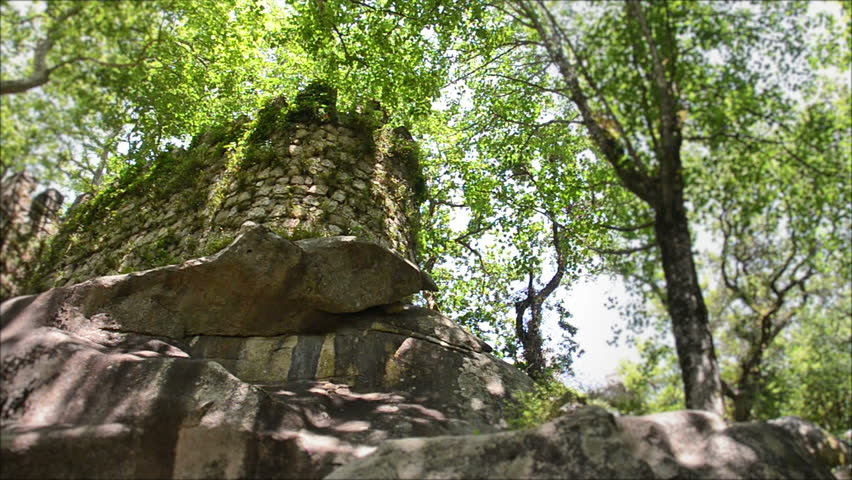 medieval tower in the woods - HD stock footage clip
