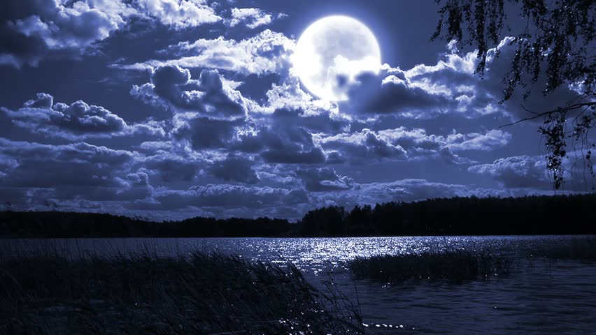 Full moon night landscape with forest lake. - HD stock footage clip