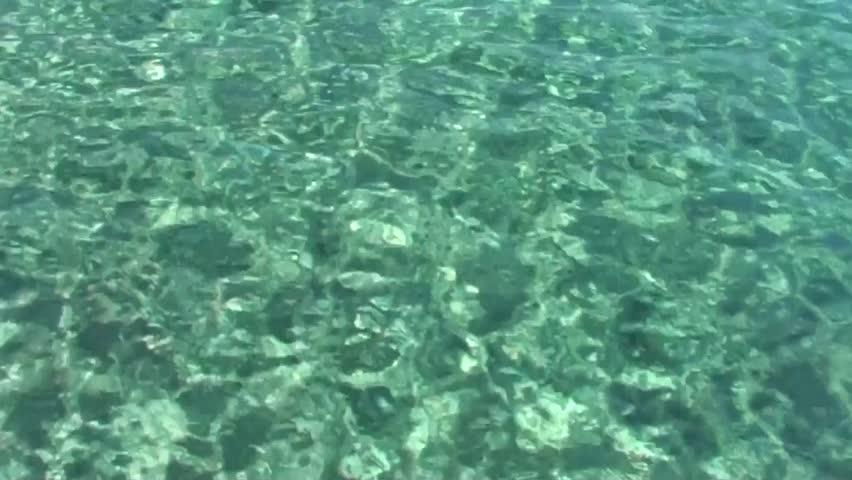Malachite sea w...