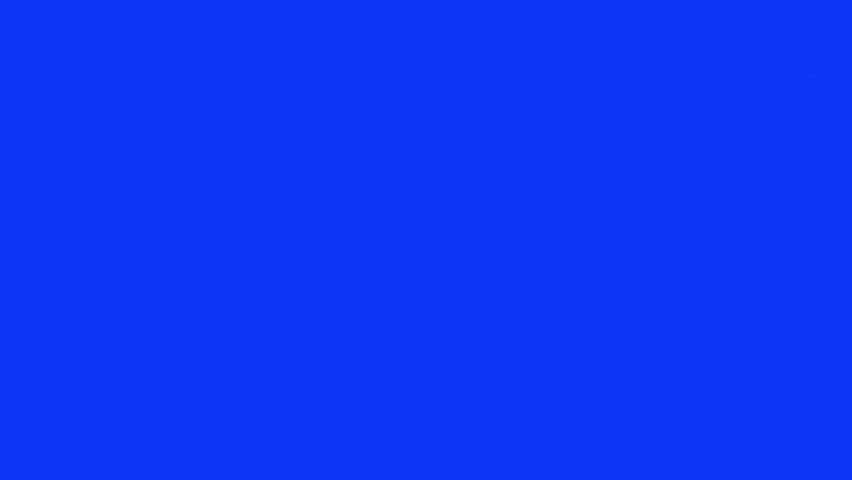 Cat on bluescreen. Pack of 4. Going from side to side and stationary. Sgot with red camera - HD stock footage clip