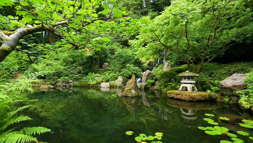 japanese botanical zen garden stock footage video