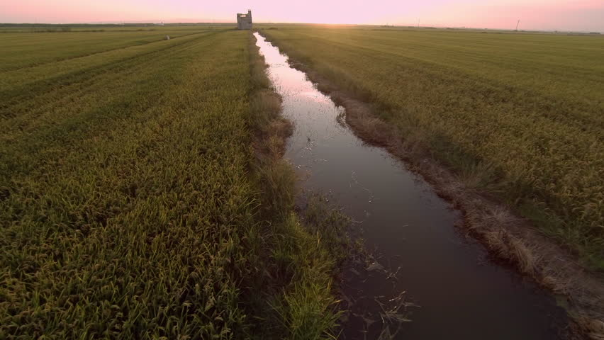 Aerial view of Ricefields of Valencia, Spain - Gopro Hero3