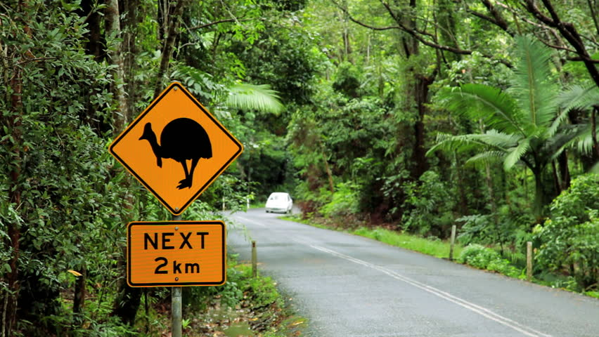 Magpie season: this time, it's personal | Lifestyle ...  |Australia Swooping Birds Sign