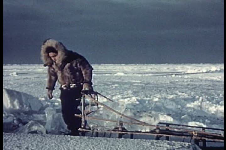 1950s - Eskimos take ice by dogsled to the village while others go ice fishing.