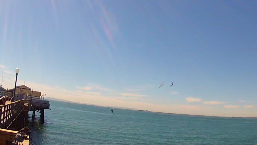 In real time, three pelicans fly over the ocean and then together dive for fish