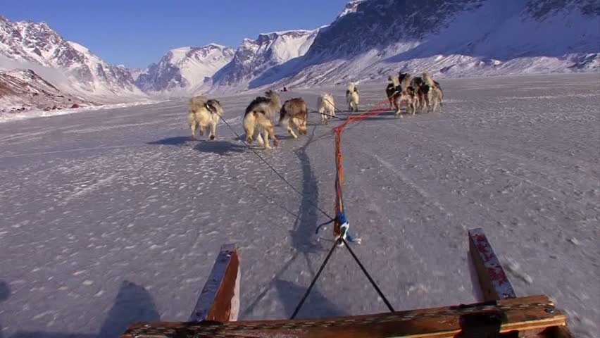POV from a dogsled heading across the Arctic tundra.