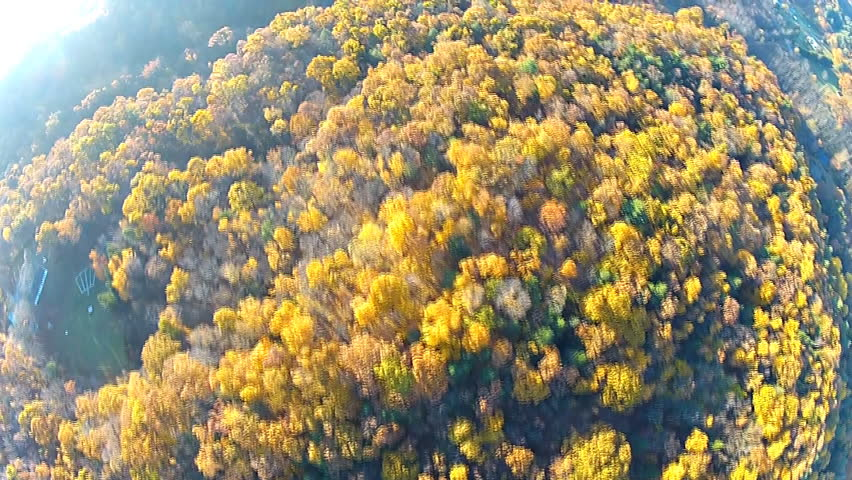 Looking down at yellow trees, fisheye lens, fall, Hudson Valley, New York. | Shutterstock HD Video #4991939