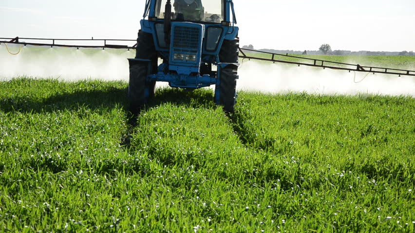 Tractor spray fertilize green field with pesticide insecticide herbicide chemicals in agriculture field in evening sunlight. Farmer care plants.