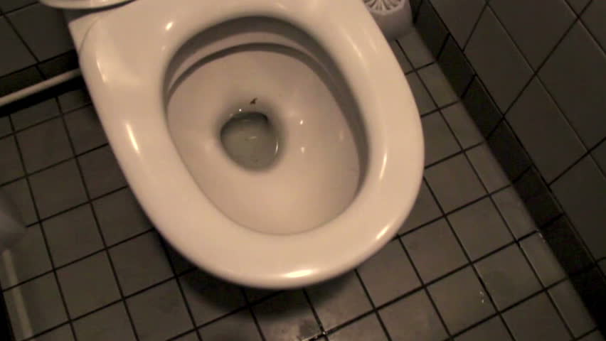 Toilet bowl and its white toilet cleaner. The white toilet bowl and also its white toilet brush cleaner with the white tile background.