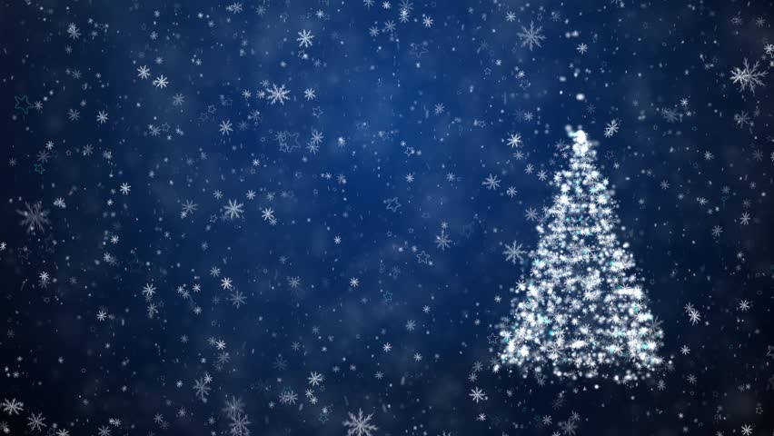 Growing New Year tree with falling snowflakes and stars