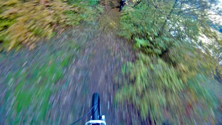 Extreme sport race, mount biker drive downhill deep in forest over autumn leafs.