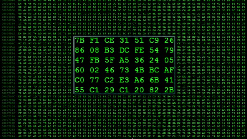 Green Hexadecimal code running up a computer screen. Green digits. Close-up shot. With the frame in the middle. Search for a specific code | Shutterstock HD Video #5187392