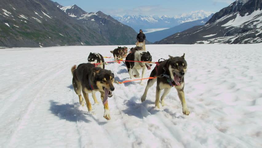 Dogsledding teamwork huskies pulling sledge up mountain pass Chugach Mountains, South central Alaska, USA, RED EPIC, 4K, UHD, Ultra HD resolution