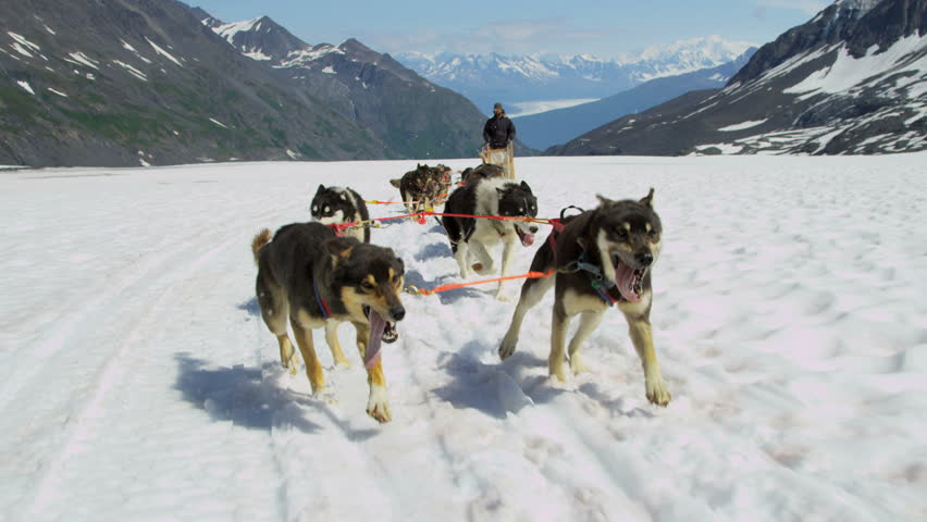 Dogsledding teamwork huskies pulling sledge up mountain pass Chugach Mountains, South central Alaska, USA, RED EPIC, 4K, UHD, Ultra HD resolution
