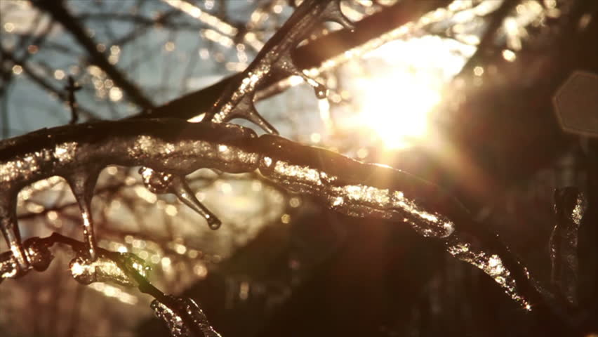 Ice Storm, Icing , Icicle Melting - HD stock video clip