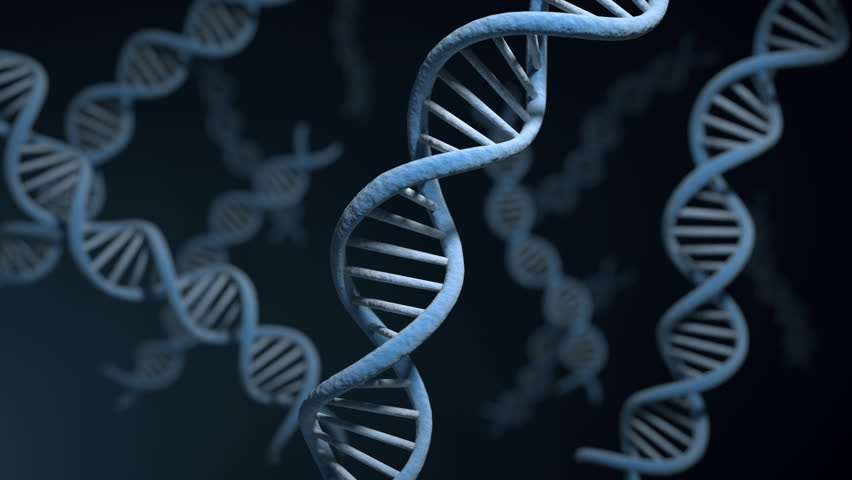 Genetics Education Resource Room | Genetics Society of America