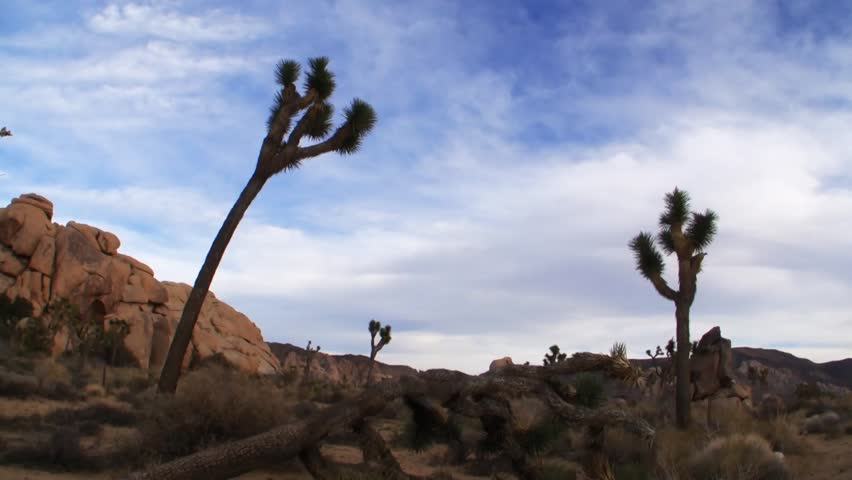 Time Lapse of Desert Landscape at Joshua Tree National Park, California