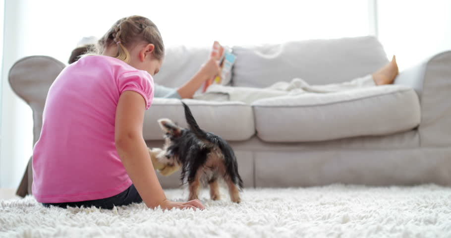 Little girl playing with puppy and bone with her mother reading on the sofa at home in the living room