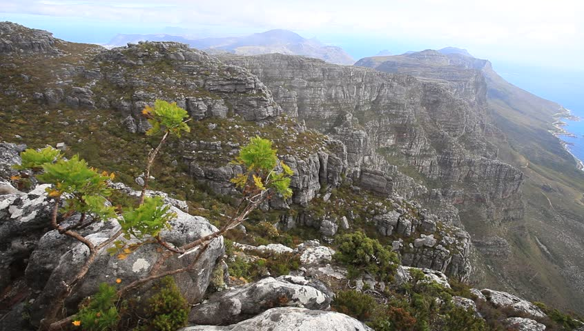 Rock and landscape on top of table mountain cape town for Landscaping rocks cape town