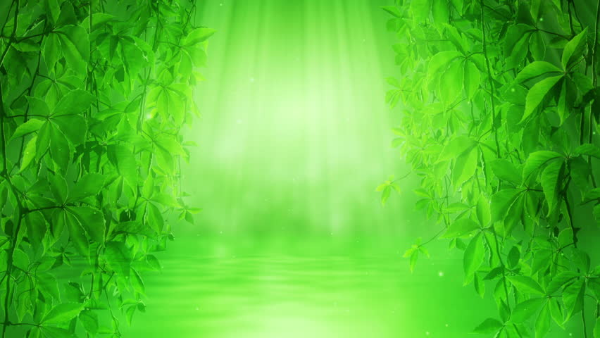 Green Colors Of Nature And A Clean Environment Stock