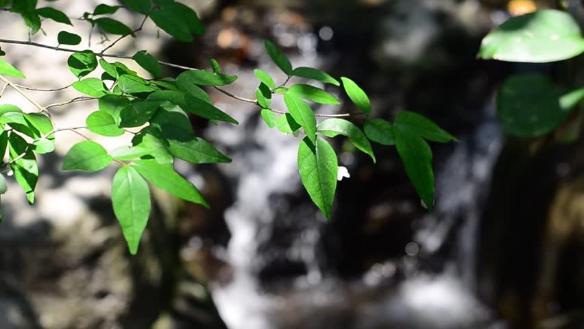 Waterfalls Videos hd Waterfall hd Stock Video