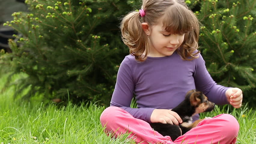little girl feeding puppy - HD stock video clip