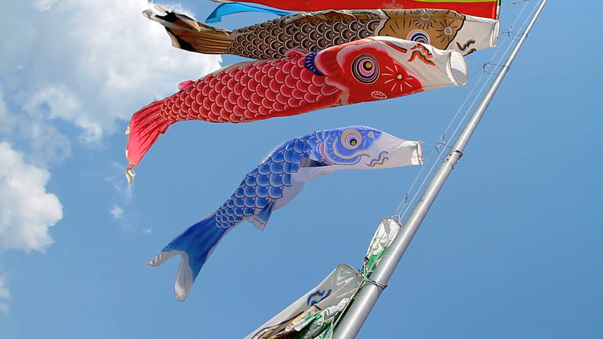Carp kite flying (koinobori). - HD stock footage clip