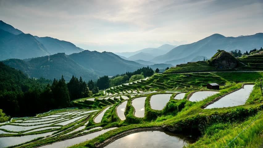 Rice Terraces at Maruyama-senmaida, Kumano, Mie, Japan. - 4K stock footage clip
