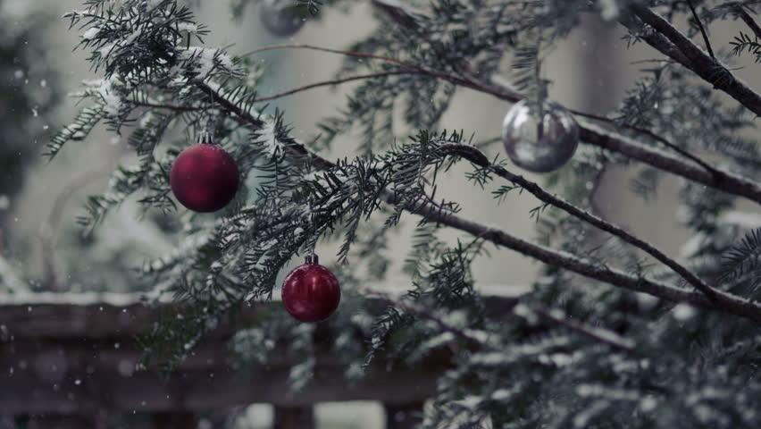 Winter Scene Slow Motion Snow Christmas Season And