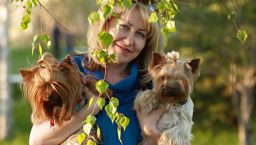 pretty blonde in the park with two yorkshire terrier - HD stock footage clip