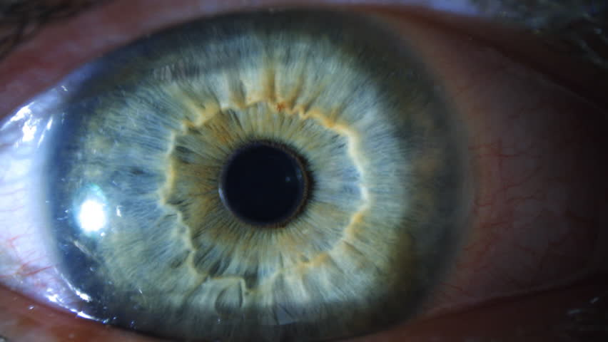 Iris Eye Hd eye iris a...