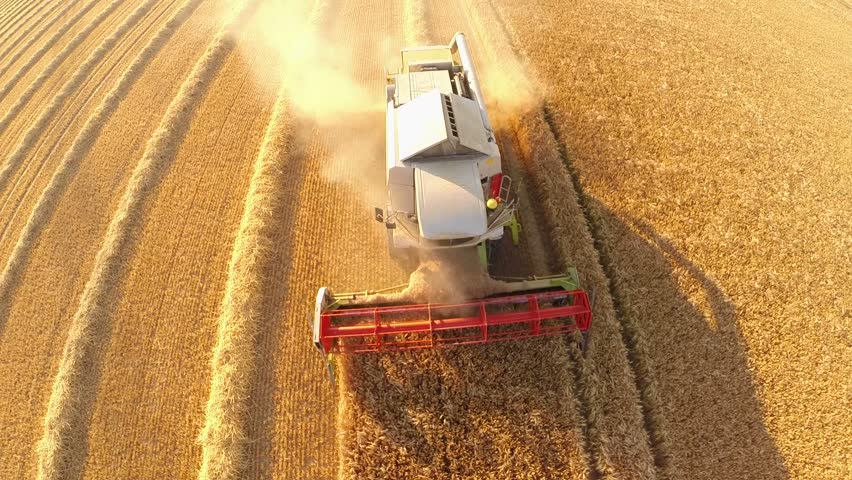 aerial video footage of a combine harvester on a grainfield in germany