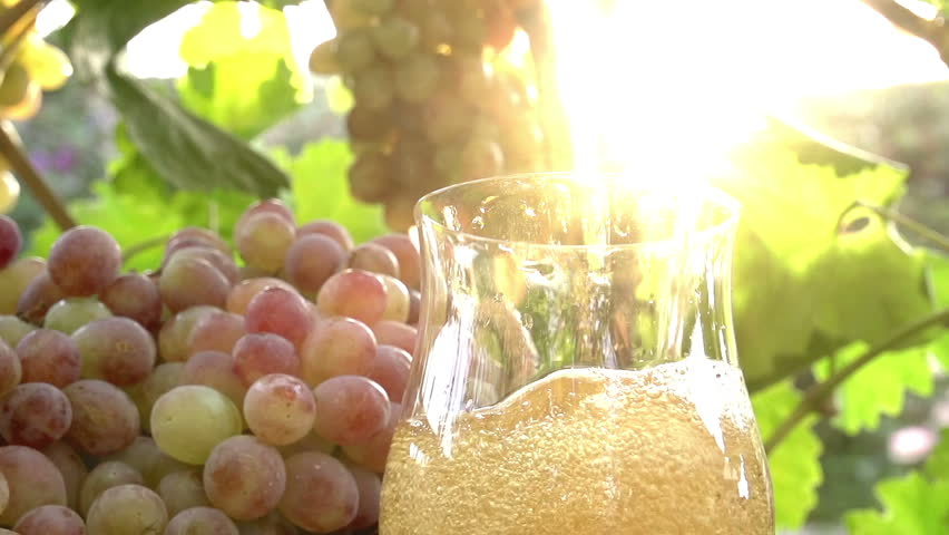 Slow Juicer Grapes : Wine Is Poured Into A Glass. Red vine Is Poured From A Jug Into A Glass On A Background Of A ...