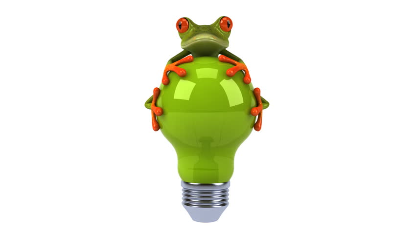 Frog with a light bulb - HD stock video clip