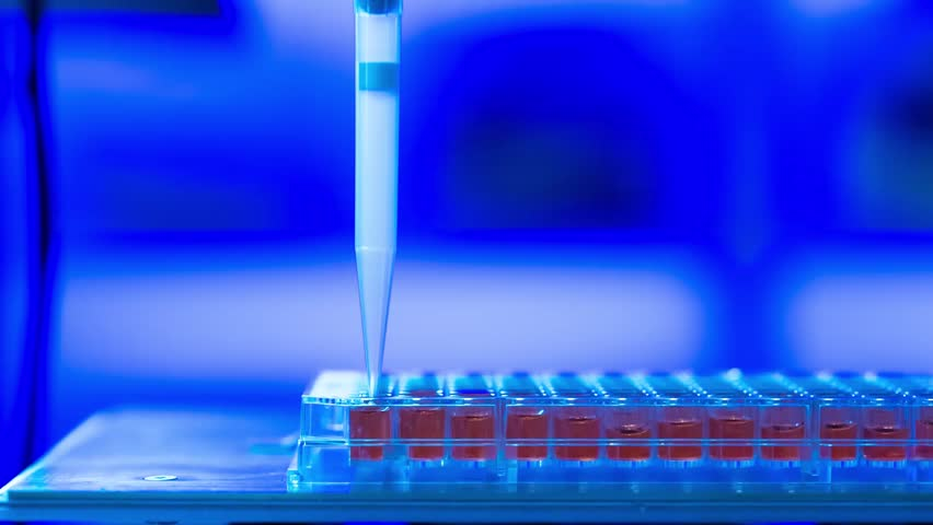 dna sequence analysis With automated analysis,dna sequencing has become easier and faster the knowledge of  dna sequence generation method is to evaluate the sequencing with very high accuracy and reliability there are some common automated dna sequencing problems :- 1 failure of the dna sequence reaction.