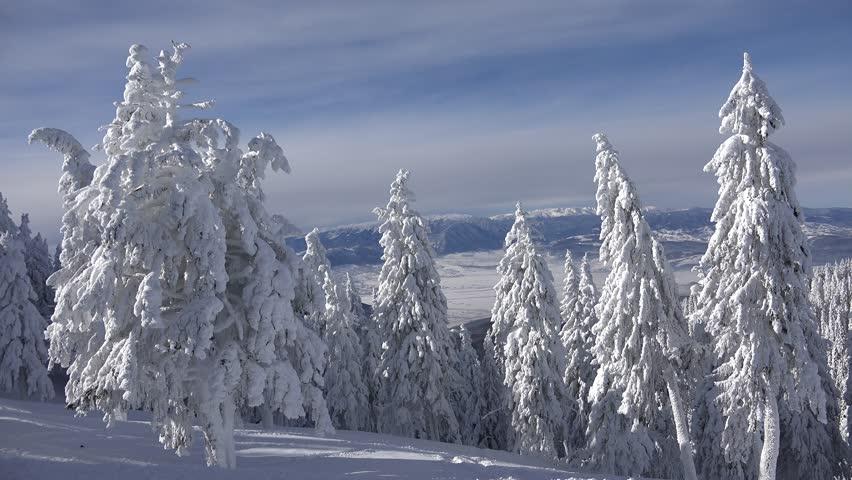 4K Snow, Fairytale Winter Scene, Mountain View, Frozen ...