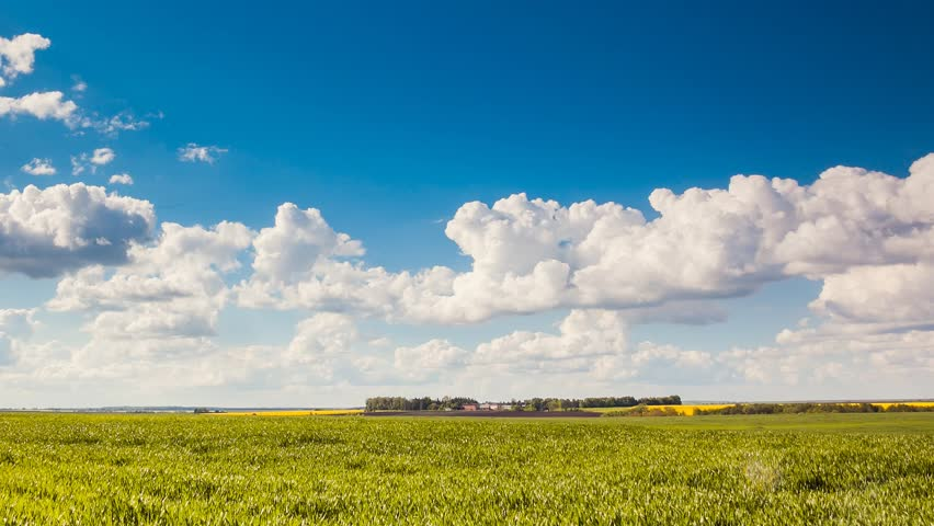 Time lapse clip. Fantastic green field with blue heaven. Ukraine, Europe. Beauty world. Full HD video (High Definition)