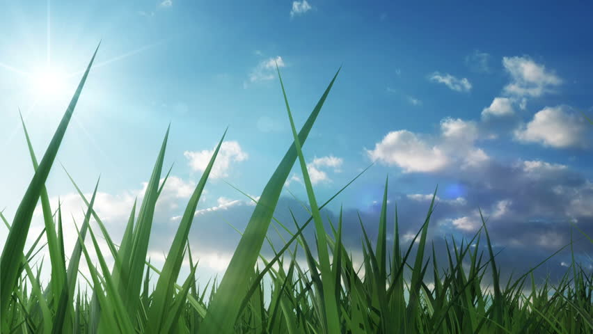 Time Lapse Animation of Green Grass with Flowing Clouds and Sun. HQ Full HD 1920x1080 Video Clip