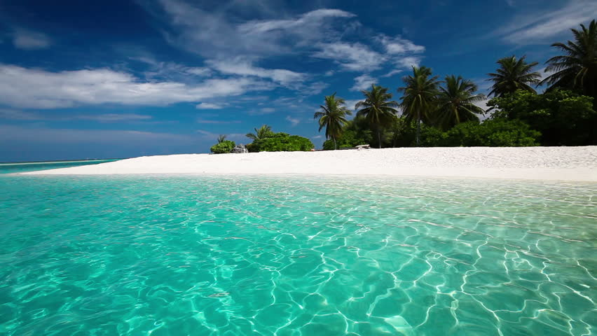 Palm trees over tropical lagoon with white beach in Maldives #9318311