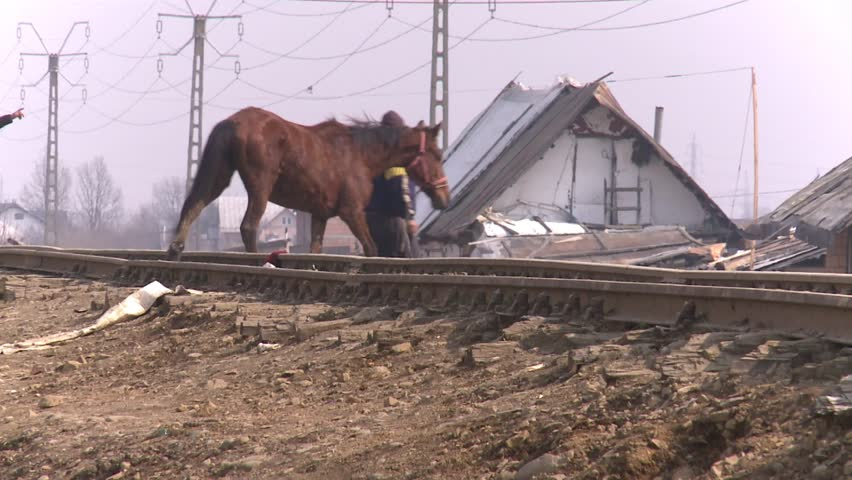 Romania Baia Mare - 11 march 2015 Gypsy families live in inhuman conditions no sewerage, electricity and water - 11 march 2015 Romania Baia Mare -