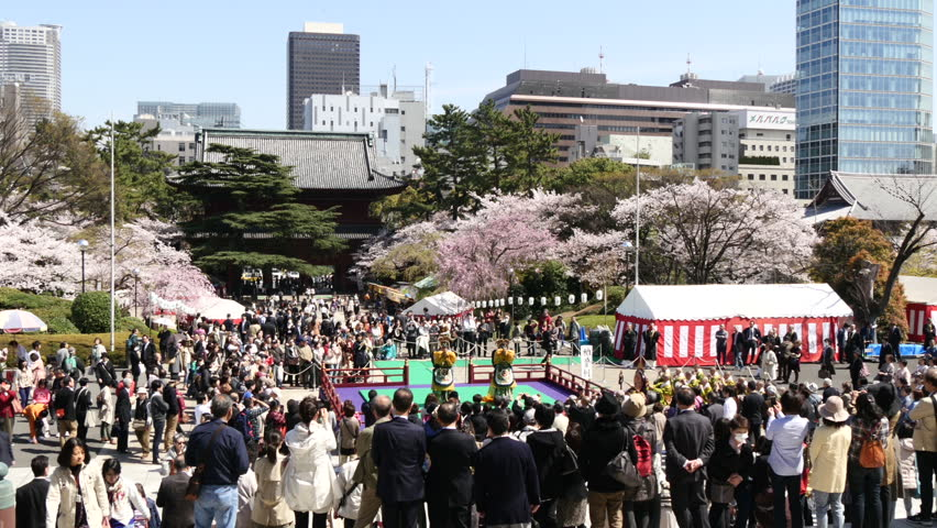 ZOJOJI TEMPLE, JAPAN - APRIL 2, 2015. Crowd gathering to watch the religious performances for the spring festival at Zojyoji temple.  - HD stock footage clip